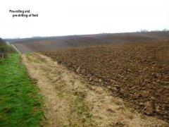 ploughedfield.jpg