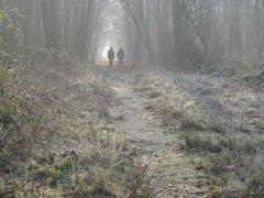winter2008b.jpg