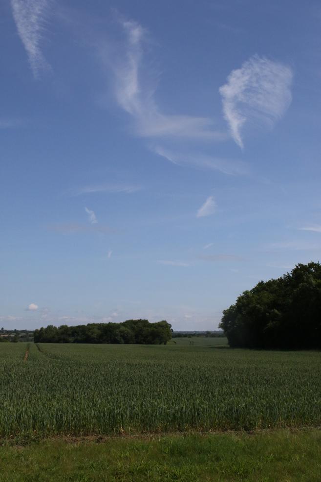 big-sky-1.jpg