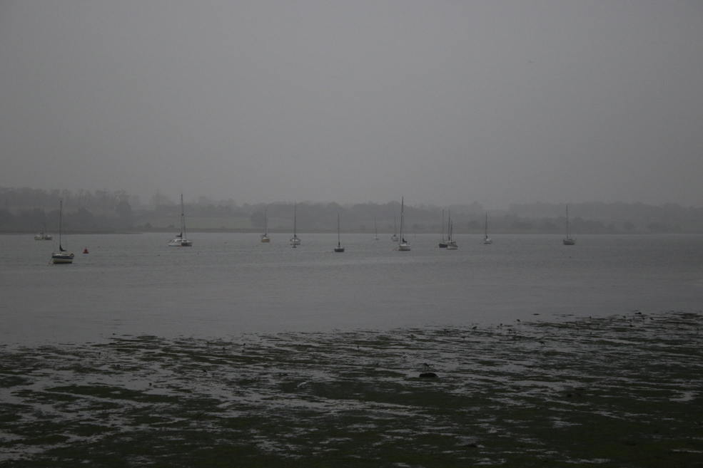 drizzly-Mistley.jpg