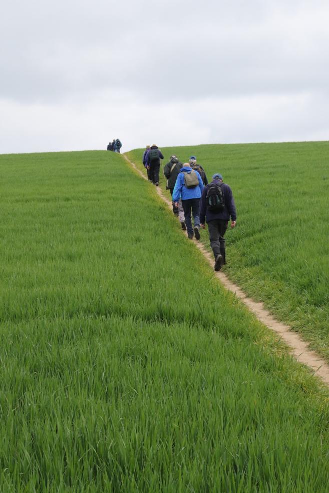 hill-climb.jpg