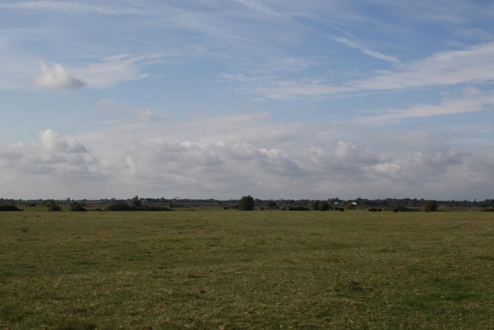open-skies1.jpg